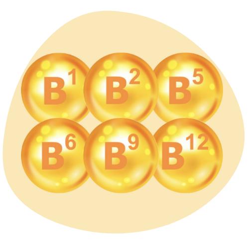 Biovancia Santé - 2 3