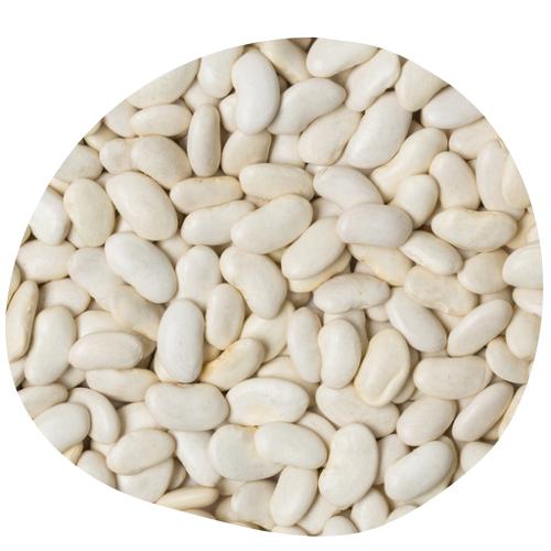 Nutrilim 24 : haricot blanc