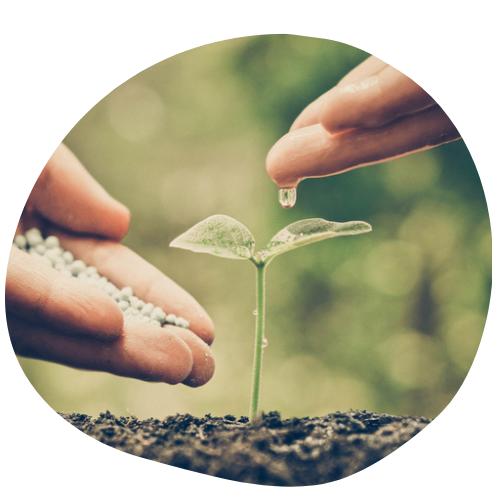 Biovancia Santé - BVA   SYM   terreau vie