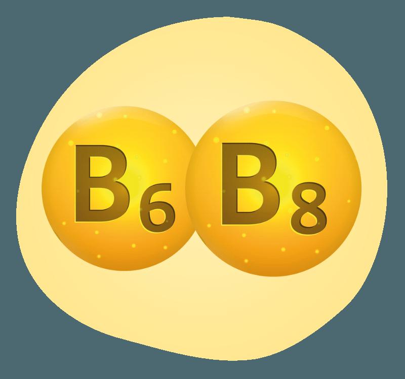 Biovancia Santé - Bulle Actif B6 B8
