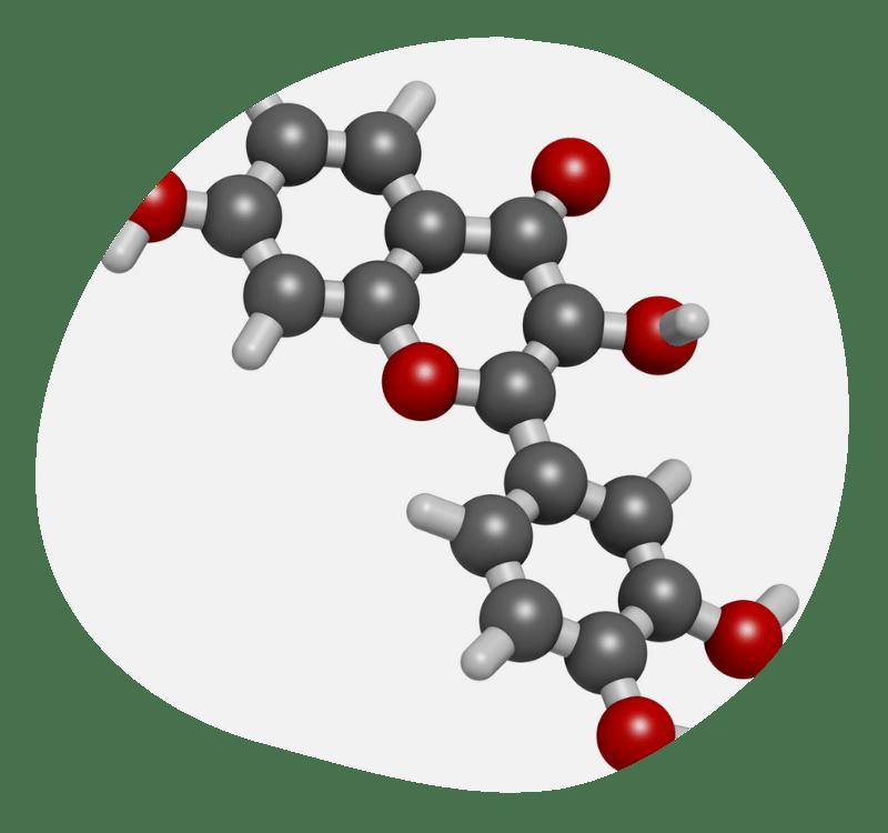 Biovancia Santé - Actif Fisetine