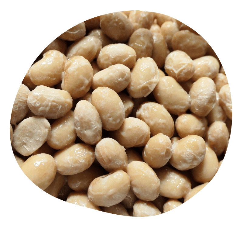 Biovancia Santé - Bulle Actif Nattiase
