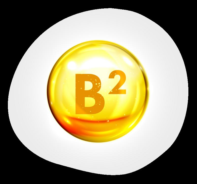Biovancia Santé - Bulle Actif 10